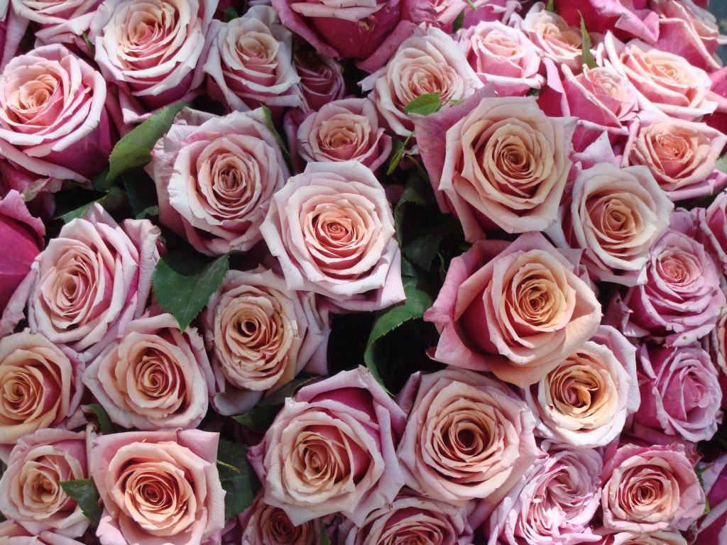 Beautiful wedding bouquet-roses