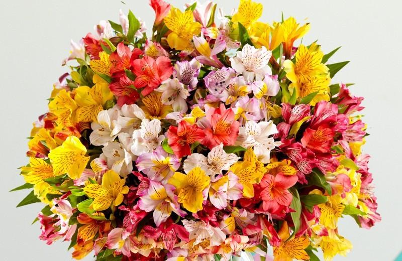 Beautiful wedding bouquet-Lilies